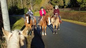 Haney Horsemen Exec Karlene and Lynn with new friend Arlene! Welcome to HHA Arlene!